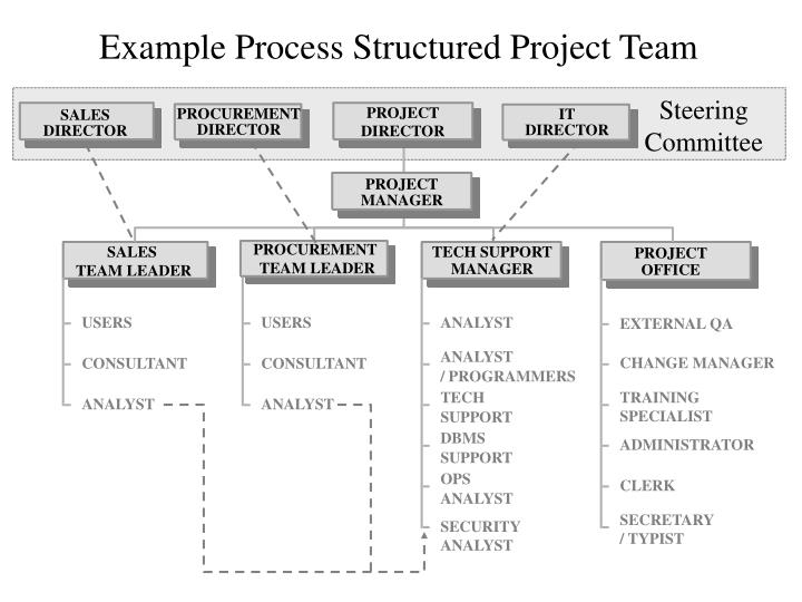 team selection identify the project organization structure selected and why it was selected explain  The project team has a greater chance of producing more and project success is more possible collocate if you can i understand that cost factors might drive certain activities to other countries, but, if there is even the slightest chance that you can put your team members together, do it.