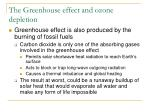 the greenhouse effect and ozone depletion1