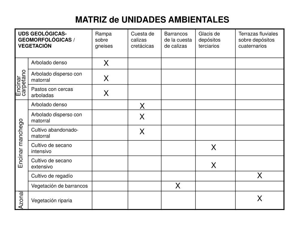 MATRIZ de UNIDADES AMBIENTALES