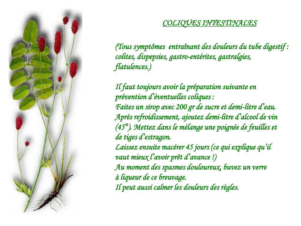 COLIQUES INTESTINALES