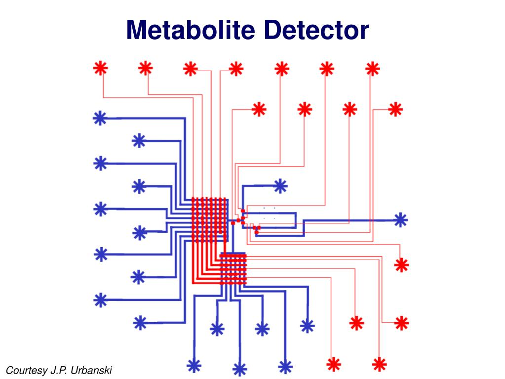 Metabolite Detector
