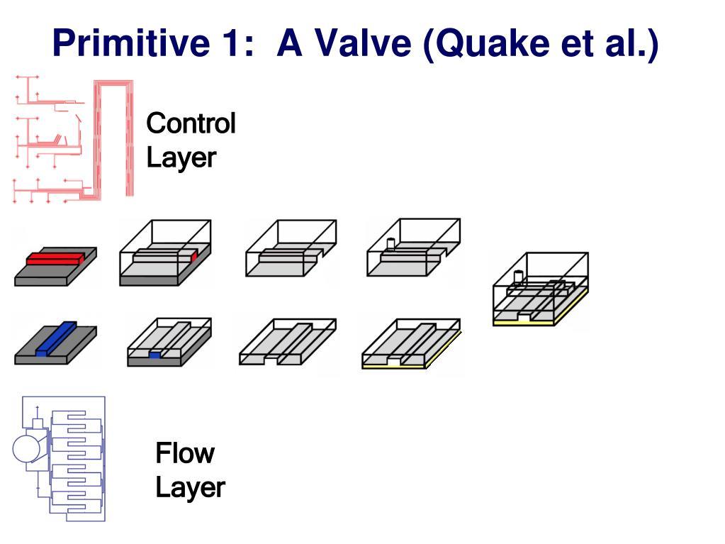 Primitive 1:  A Valve (Quake et al.)