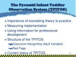 the pyramid infant toddler observation system tpitos