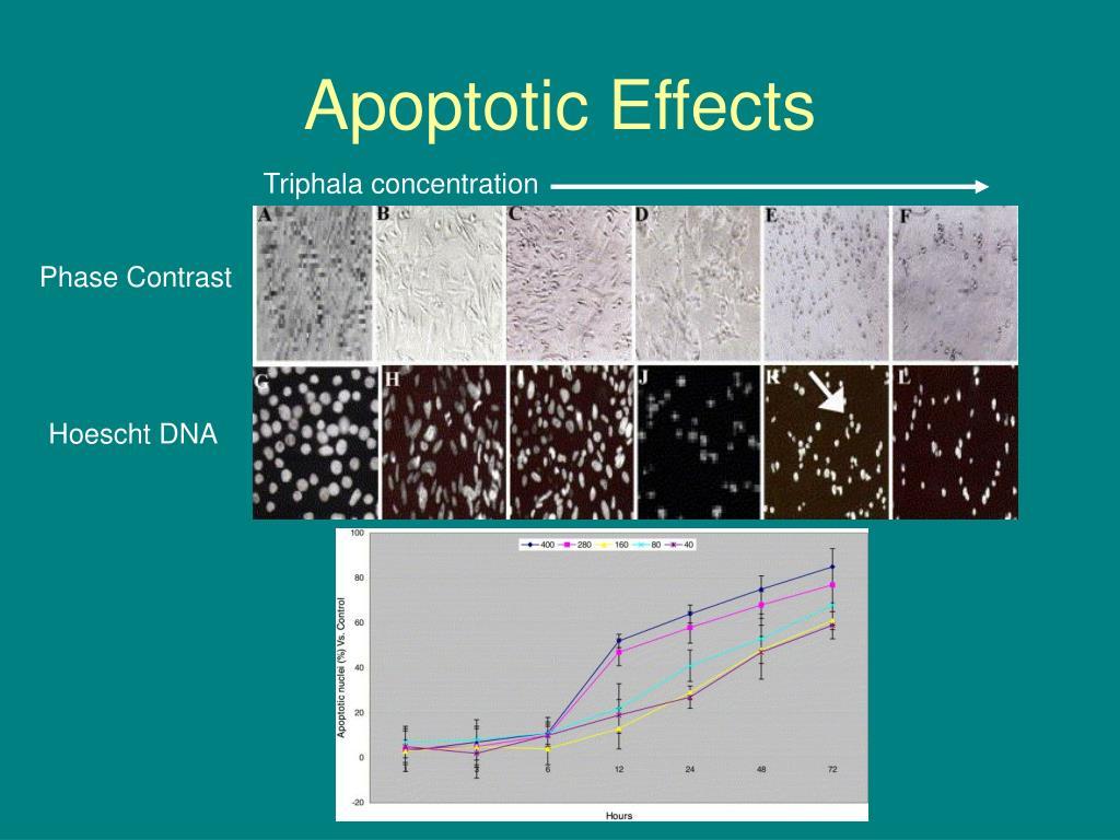 Apoptotic Effects