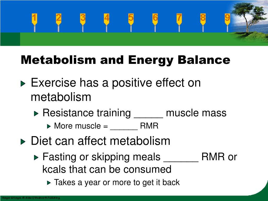 Metabolism and Energy Balance