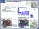 vertical consistency 1