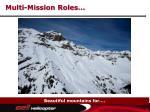 multi mission roles9