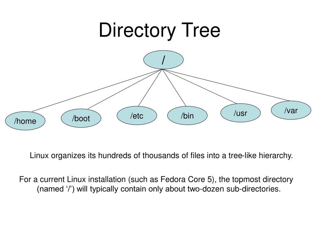 Directory Tree