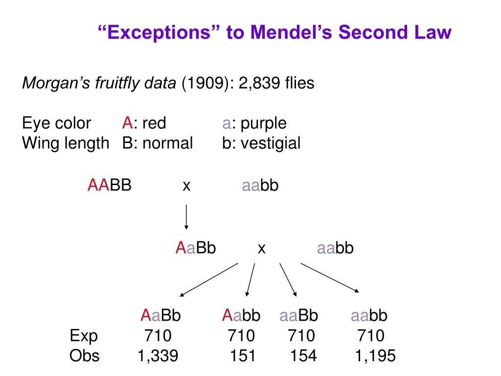 """""""Exceptions"""" to Mendel's Second Law"""