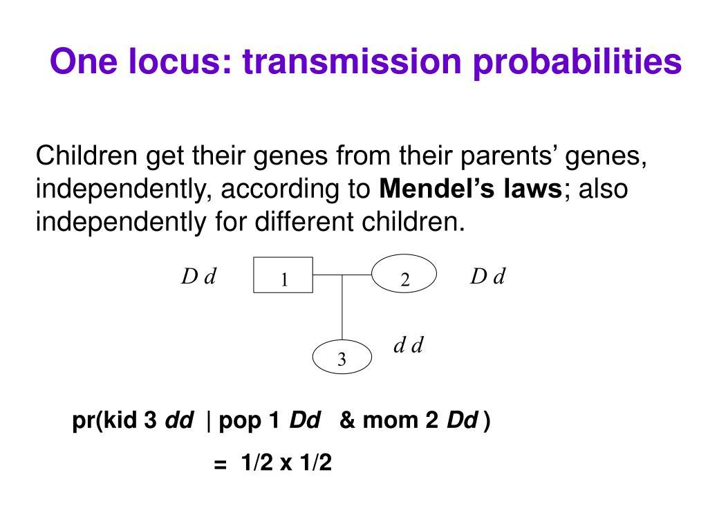 One locus: transmission probabilities