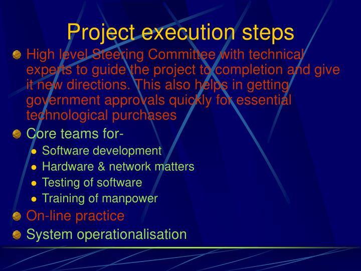 Project execution steps