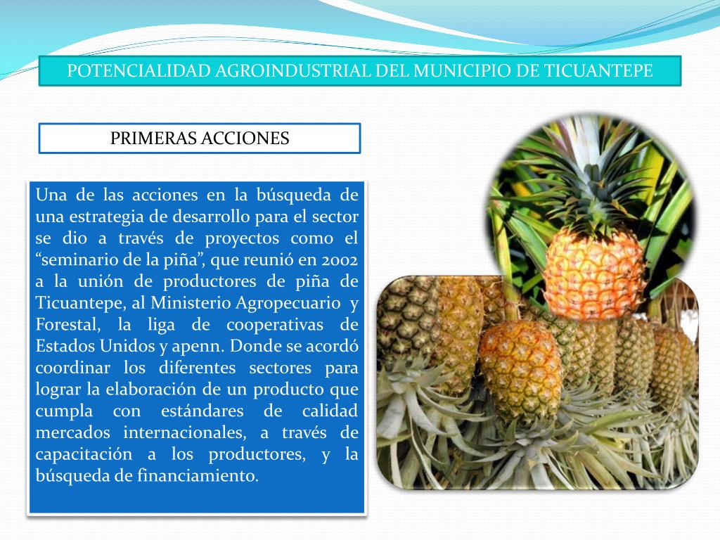 POTENCIALIDAD AGROINDUSTRIAL DEL MUNICIPIO DE TICUANTEPE