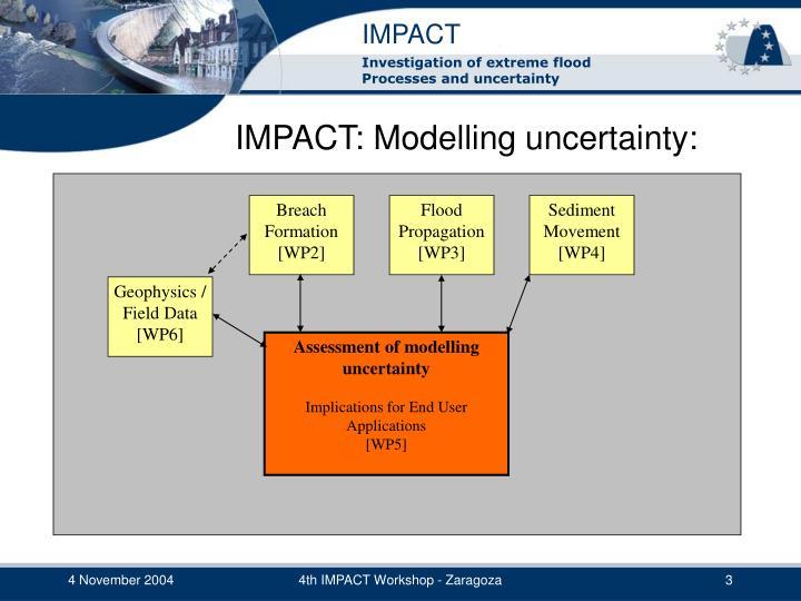 Impact modelling uncertainty