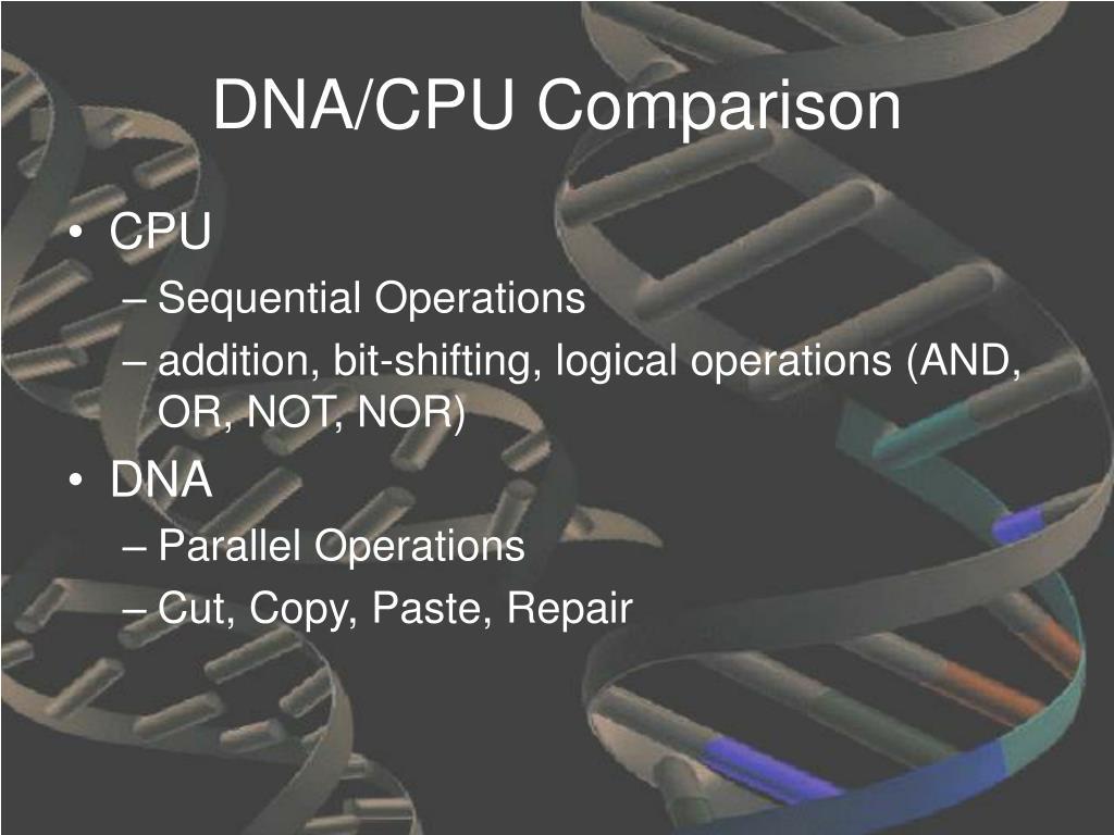 DNA/CPU Comparison