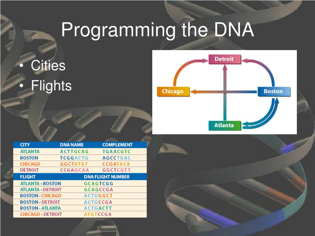 Programming the DNA