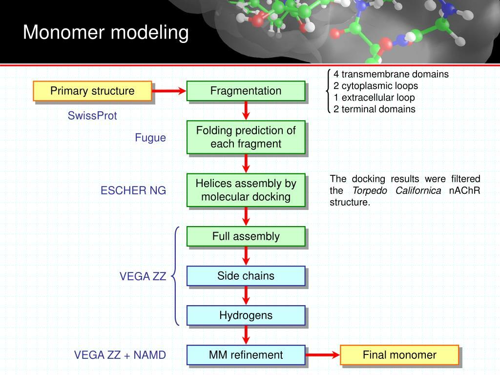 4 transmembrane domains