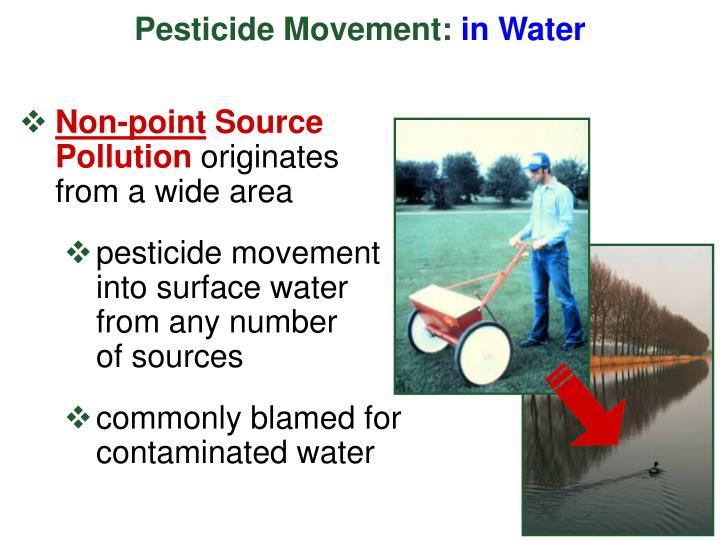 Pesticide Movement: