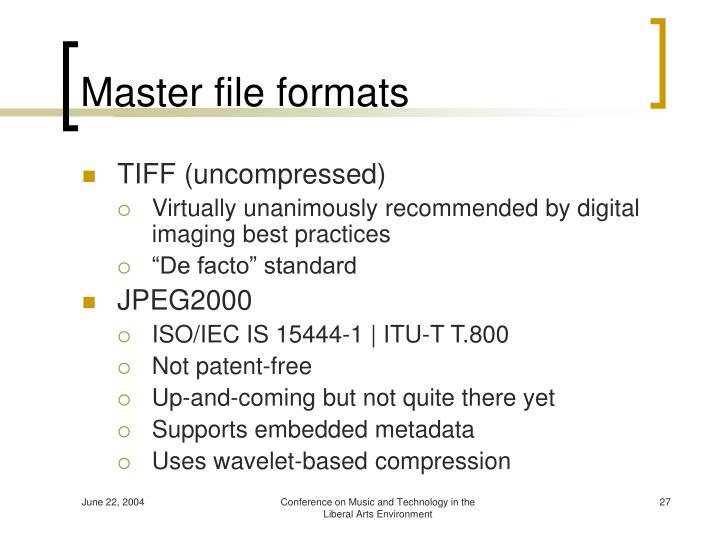 Master file formats