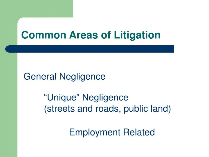 Common Areas of Litigation