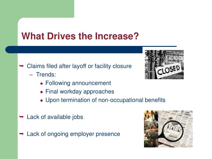 What Drives the Increase?