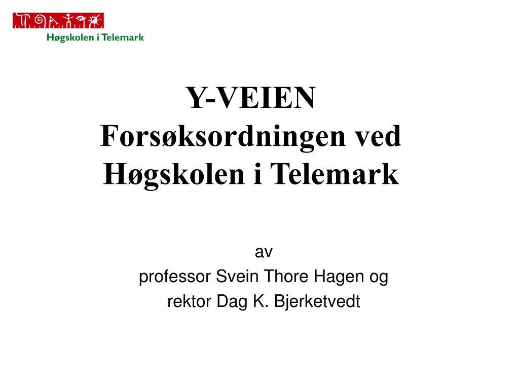 Y-VEIEN