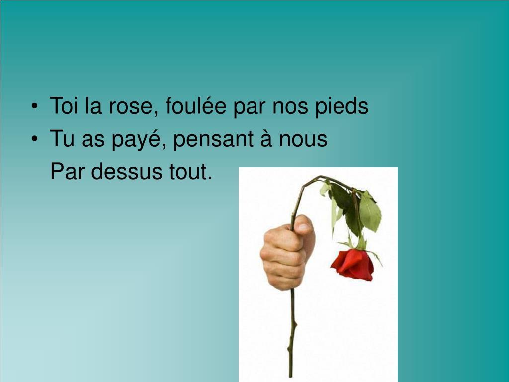 Toi la rose, foulée par nos pieds
