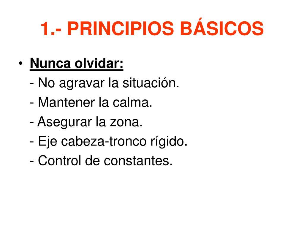 1.- PRINCIPIOS BÁSICOS
