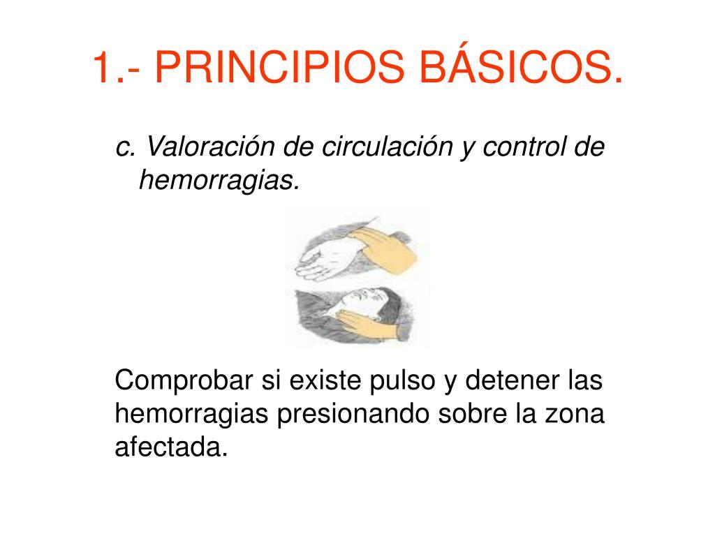 1.- PRINCIPIOS BÁSICOS.
