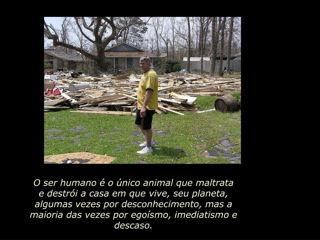 O ser humano é o único animal que maltrata e destrói a casa em que vive, seu planeta, algumas vezes por desconhecimento, mas a maioria das vezes por egoísmo, imediatismo e descaso.