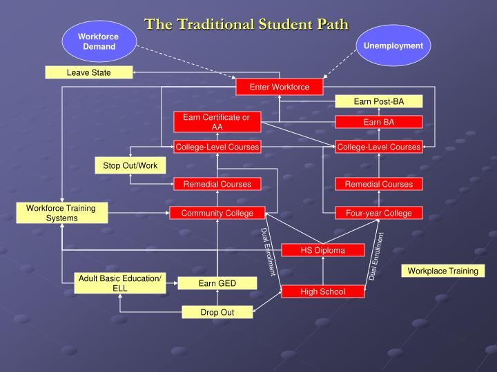 The Traditional Student Path