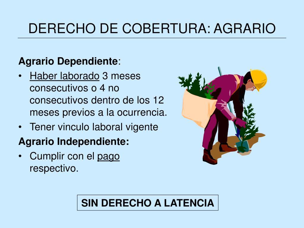 DERECHO DE COBERTURA: AGRARIO