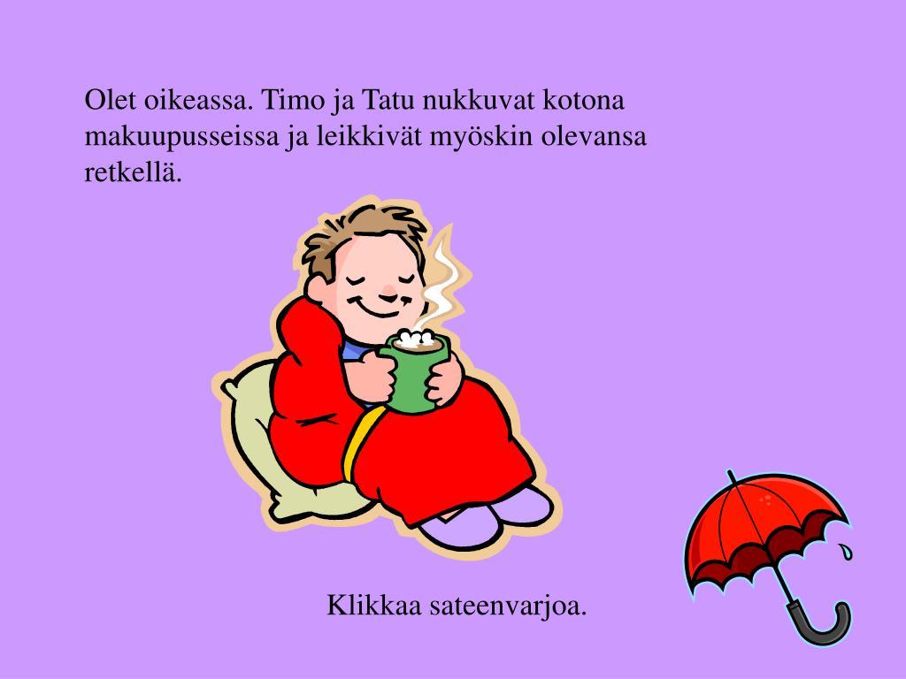Olet oikeassa. Timo ja Tatu nukkuvat kotona makuupusseissa ja leikkivät myöskin olevansa retkellä.