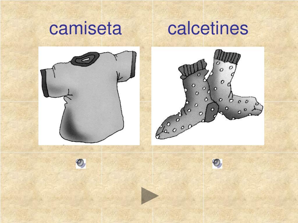 camiseta         calcetines