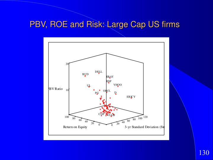 PBV, ROE and Risk: Large Cap US firms