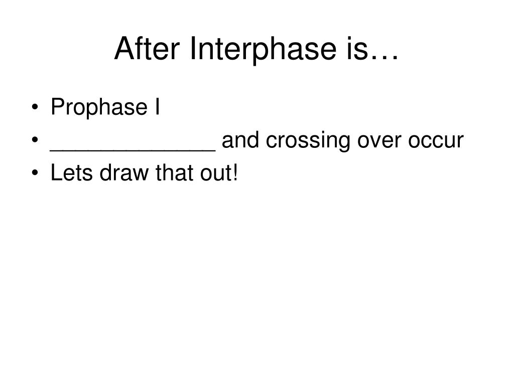After Interphase is…