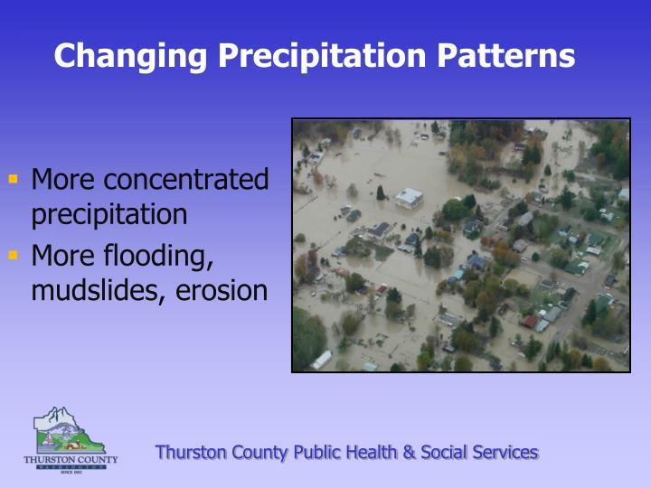 Changing Precipitation Patterns