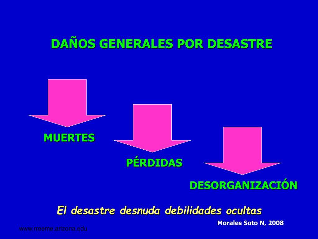 DAÑOS GENERALES POR DESASTRE
