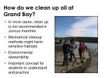 how do we clean up oil at grand bay