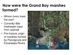 how were the grand bay marshes formed
