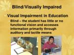 blind visually impaired28