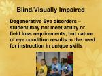 blind visually impaired30