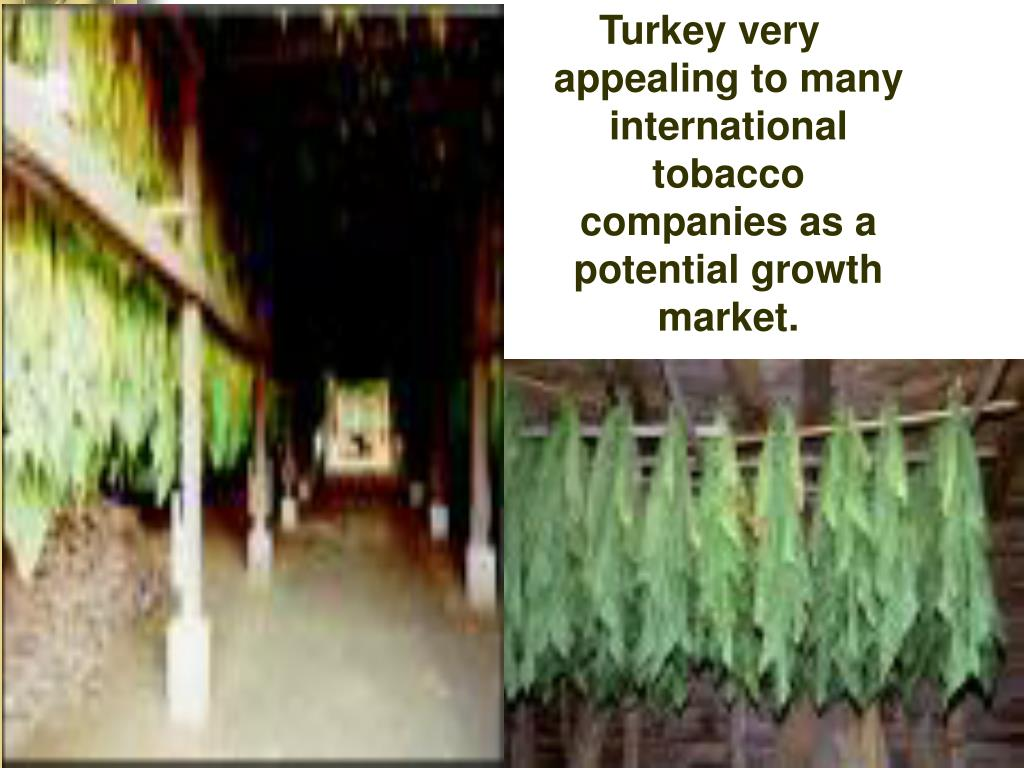 Turkey very appealing to many international tobacco companies as a potential growth market.