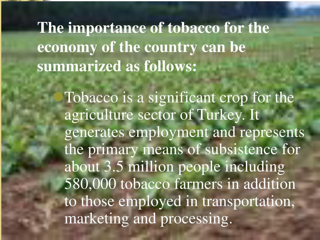 The importance of tobacco for the economy of the country can be summarized as follows:
