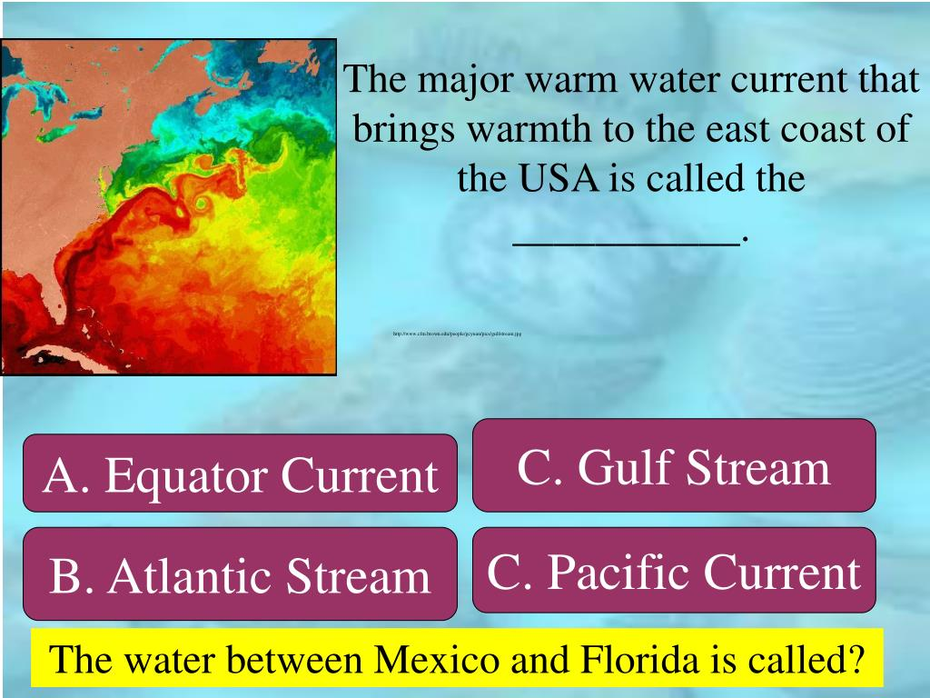 The major warm water current that brings warmth to the east coast of the USA is called the ___________.