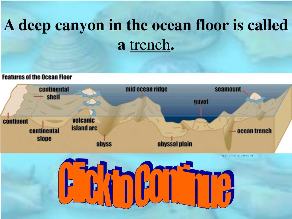 A deep canyon in the ocean floor is called a