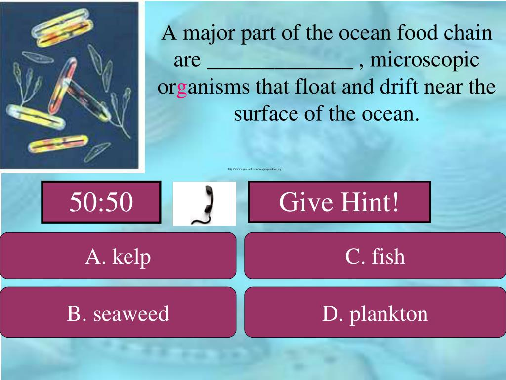 A major part of the ocean food chain are _____________ , microscopic or