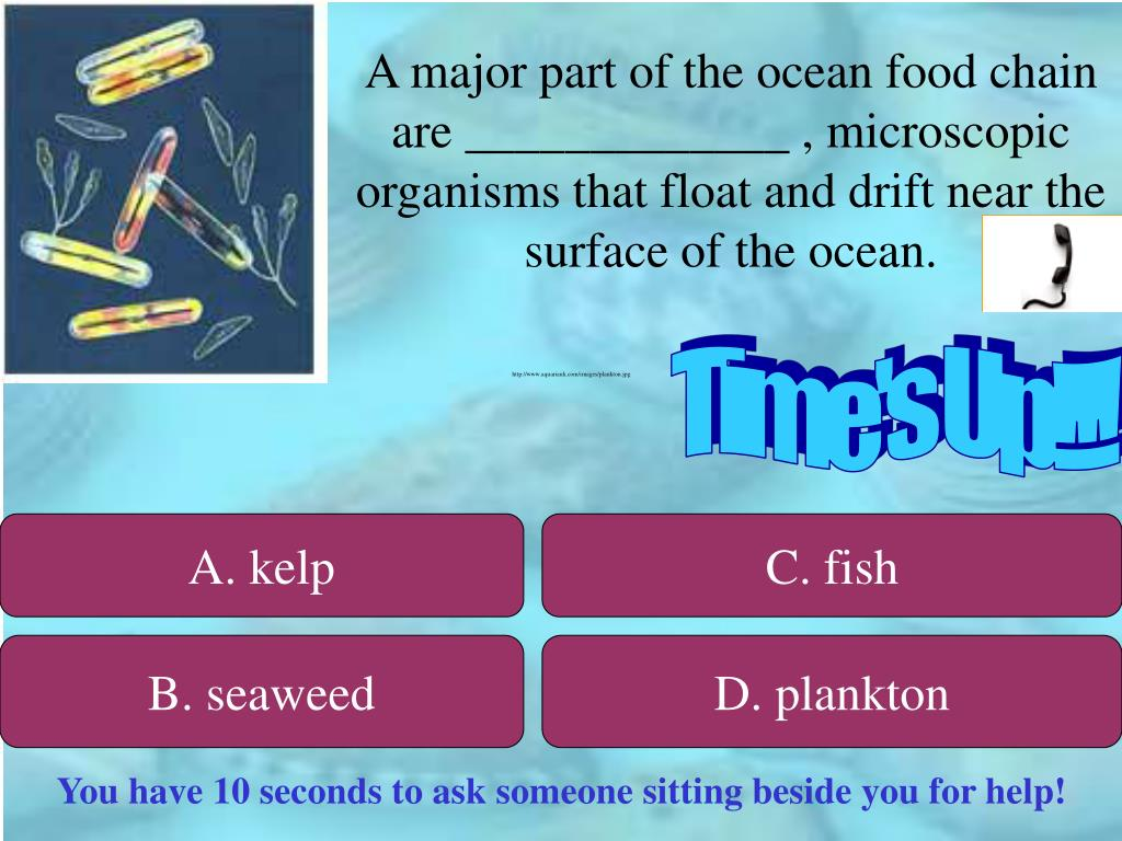 A major part of the ocean food chain are _____________ , microscopic organisms that float and drift near the surface of the ocean.