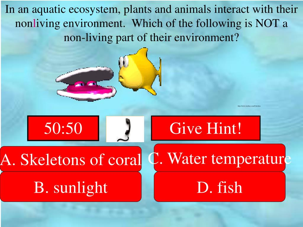 In an aquatic ecosystem, plants and animals interact with their non