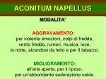 aconitum napellus11