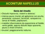 aconitum napellus12